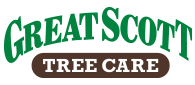 Great Scott Tree Care